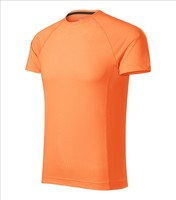 Pánske tričko DESTINY (Nr.175) - AKCIA