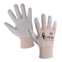 Pracovné rukavice TALE kombinované